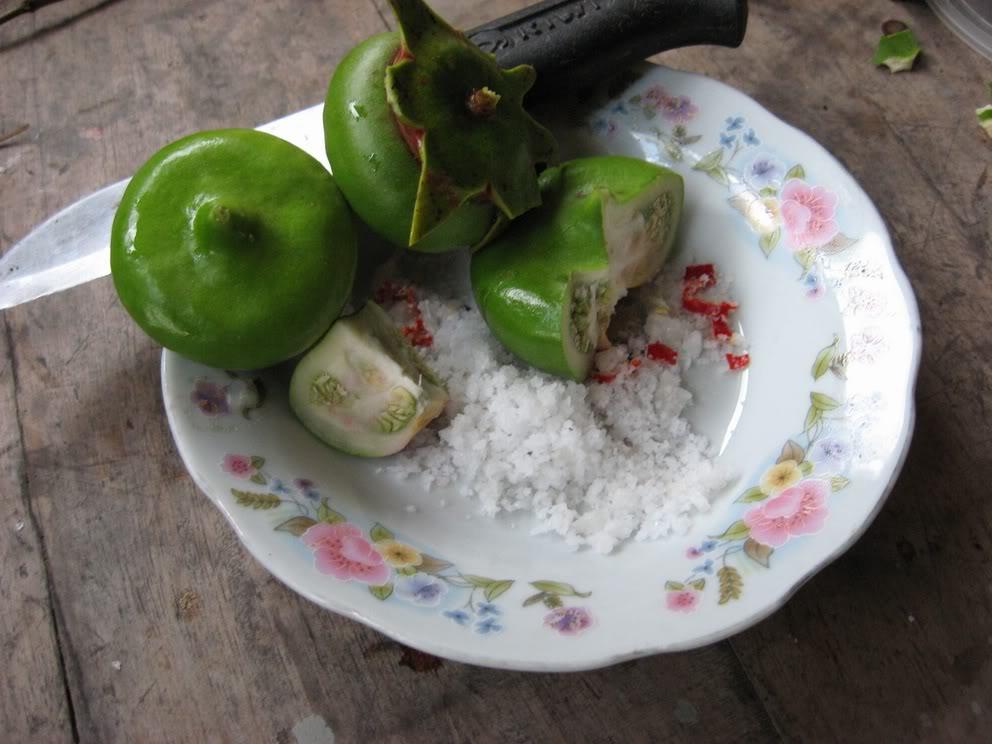 Kết quả hình ảnh cho trái bần chấm muối